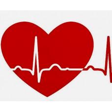 ศูนย์ตรวจหัวใจโรงพยาบาลค่ายสุรนารี