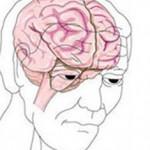 ตรวจสมองและระบบประสาท
